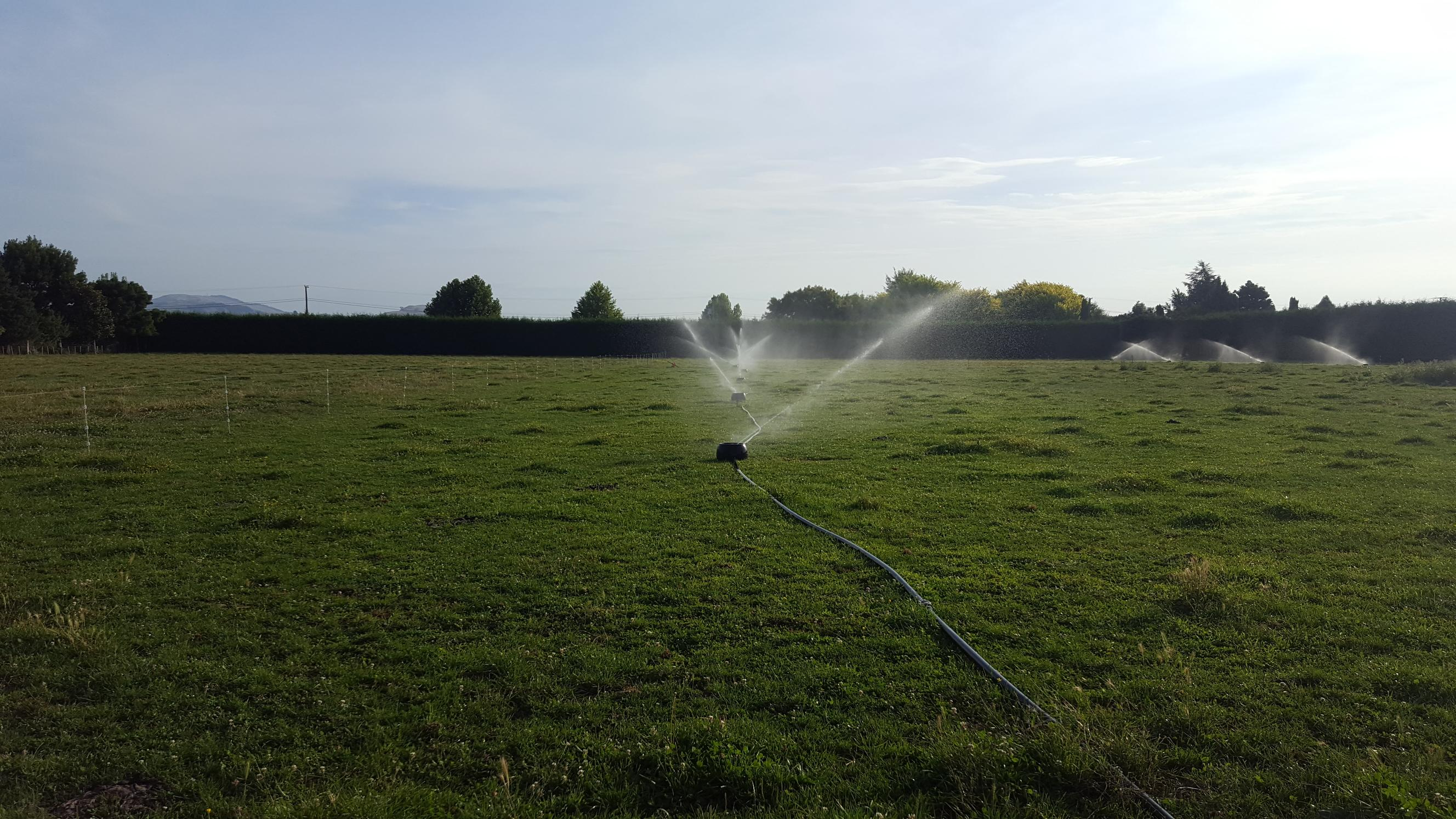 Irrigation systems for any sized garden | Harris Pumps